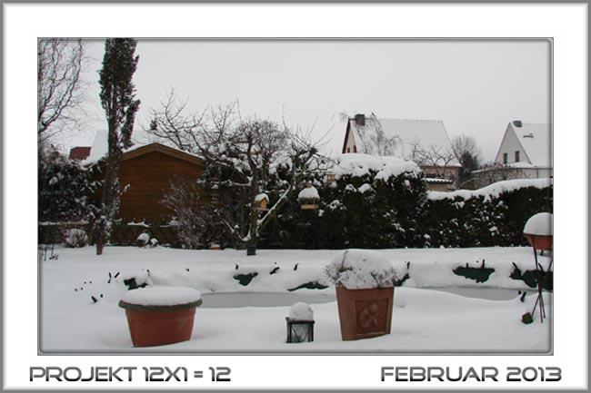 unser Garten im Februar